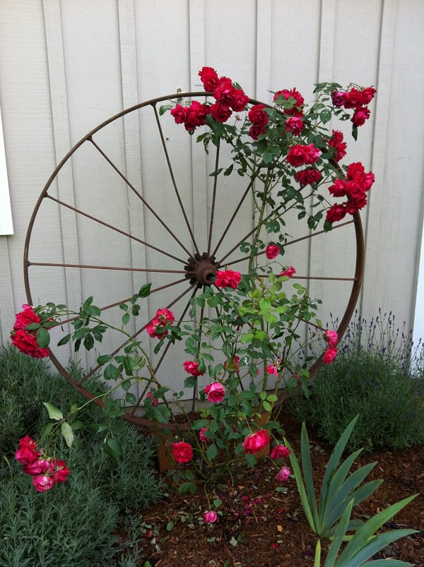 17 Best Upcycled Trellis Ideas For Garden | Cool Trellis Designs For ...