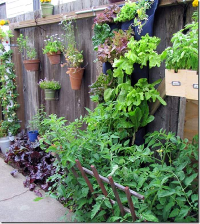 13 Garden Fence Decoration Ideas To Follow Balcony