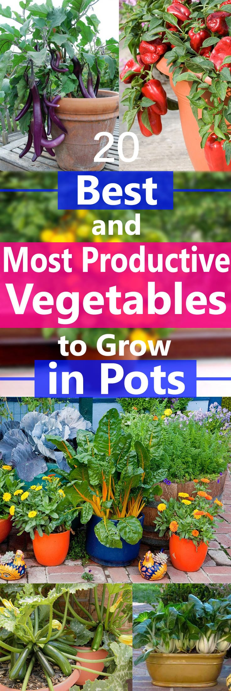 Delicieux Growing Vegetables In Containers Is Possible But There Are Some That Grow  Easily And Produce Heavily