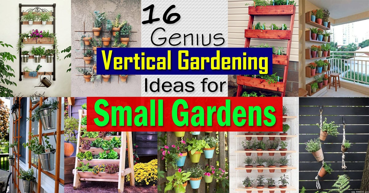16 Genius Vertical Gardening Ideas For Small Gardens Balcony - Small-gardens-idea