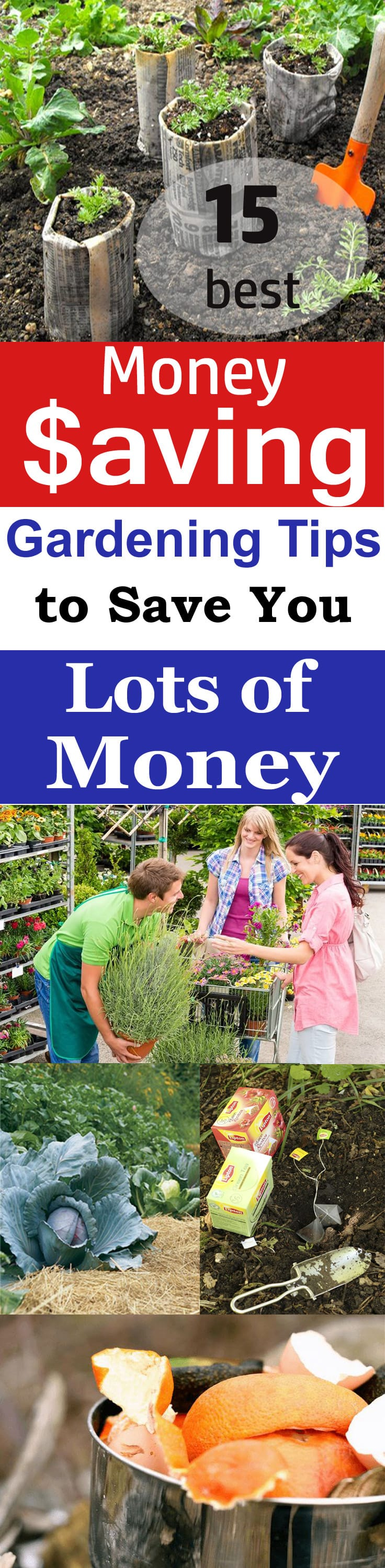 Gardening Can Be An Expensive Hobby, But If You Want, You Can Save A