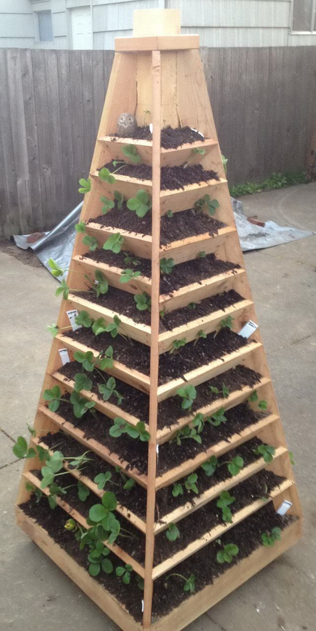 9 unbeatable diy ideas for growing strawberries in a little to no space balcony garden web. Black Bedroom Furniture Sets. Home Design Ideas