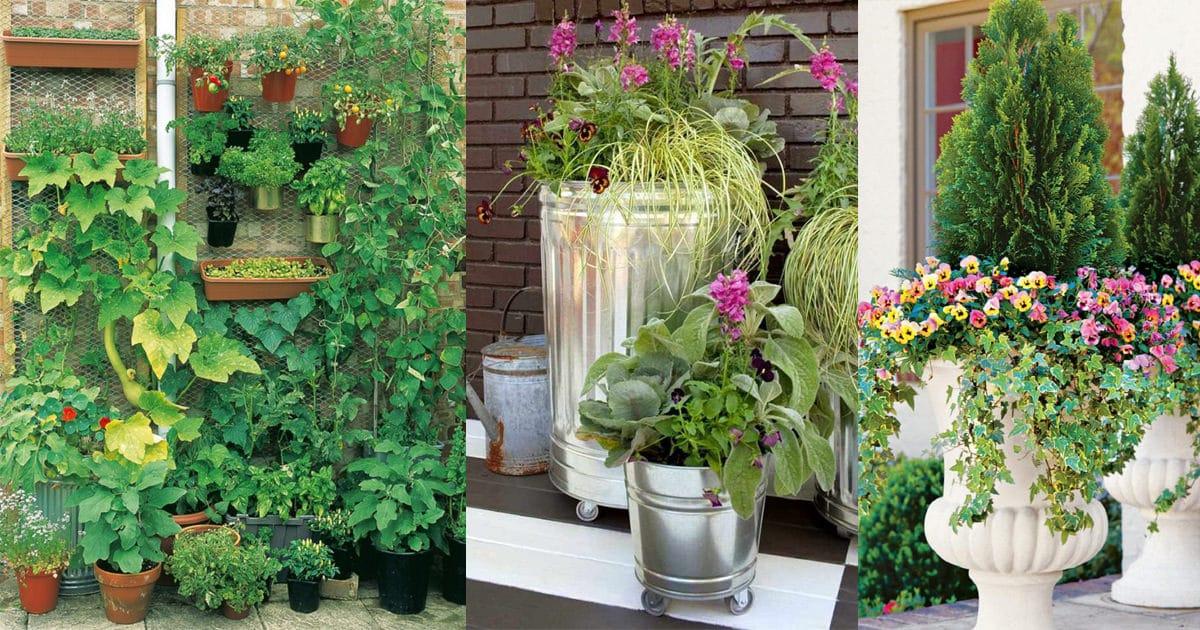 Urban Vegetable Garden Balcony
