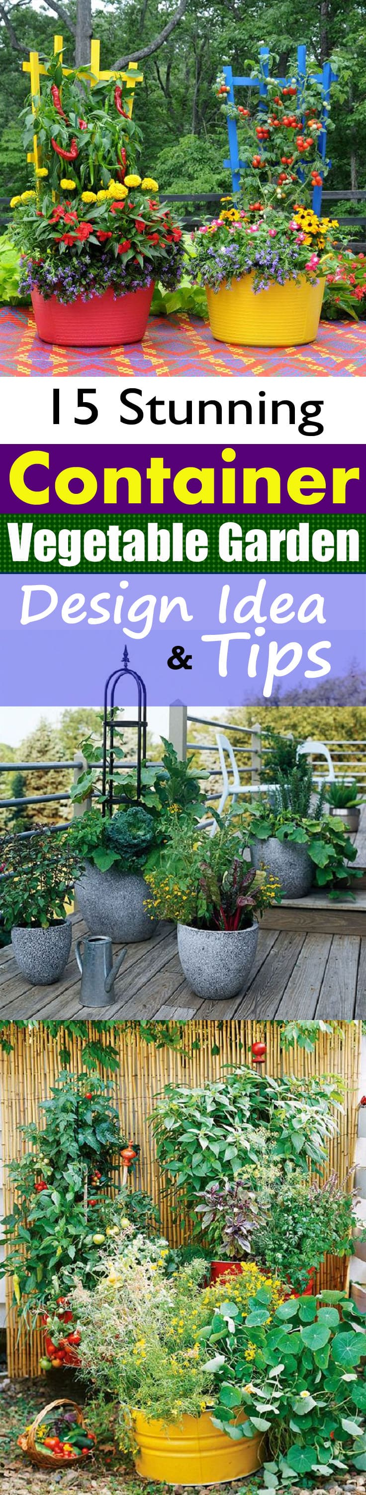 Create a Container Vegetable Garden that gives you a bountiful harvest of fresh homegrown vegetables and herbs in limited space and also looks appealing and aesthetic!