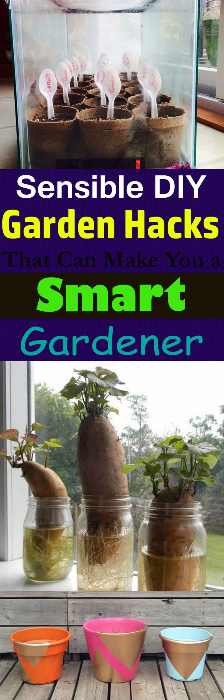 must take a look at these gardening hacks and diy ideas to make gardening easier and - Garden Hacks
