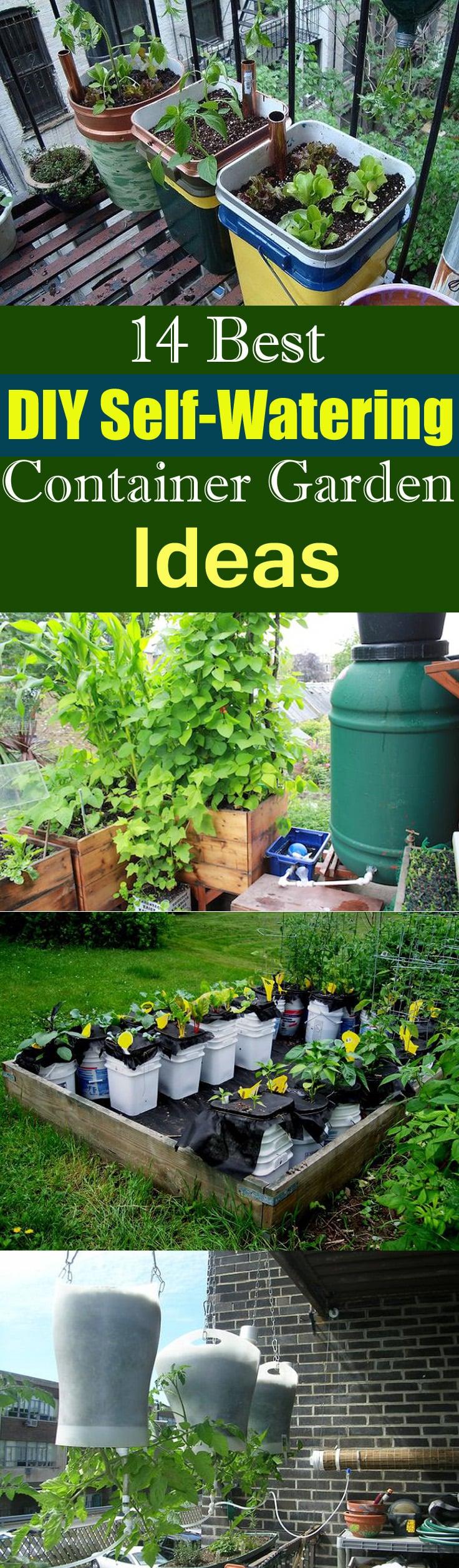 14 Best DIY Self-Watering Container Garden Ideas | Balcony ...
