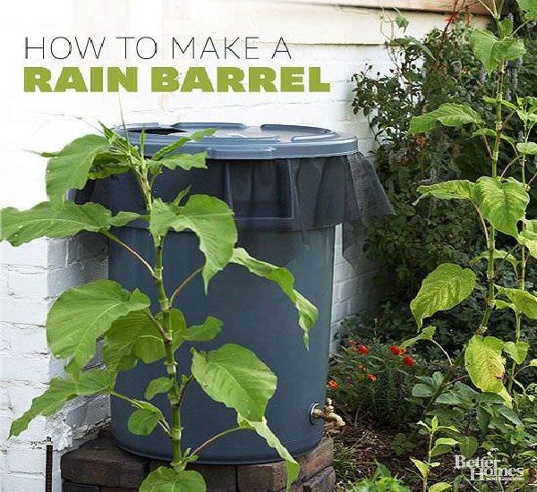 1. DIY Rain Barrel