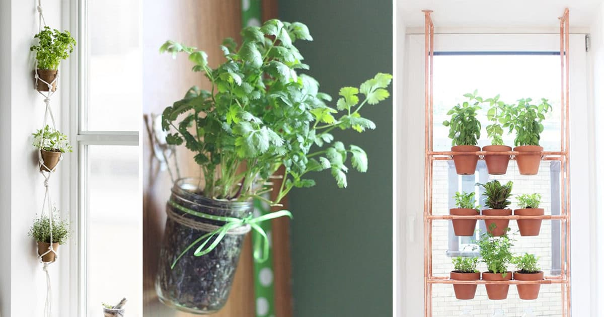 17 Hanging Herb Garden Ideas For Small Spaces Balcony Garden Web
