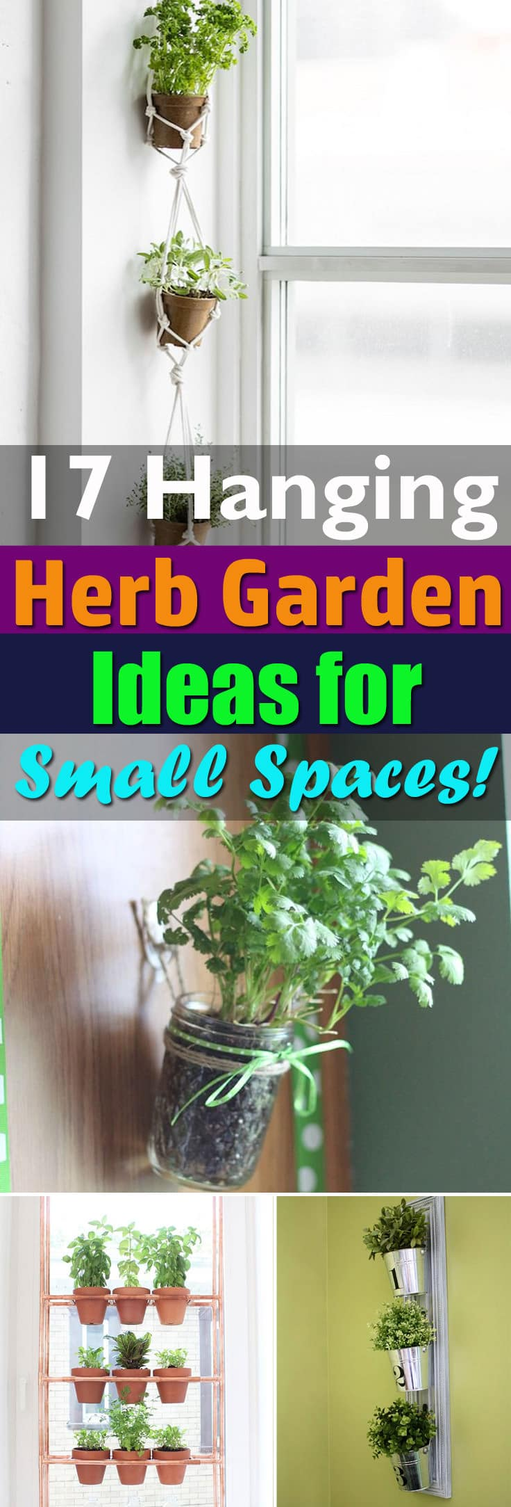 if space is premium but you still want to grow your favorite herbs then try these - Hanging Herb Garden