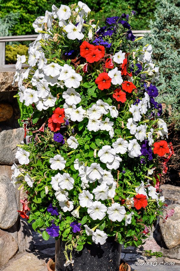 14 Dramatic Diy Flower Tower Ideas Tower Garden Diy