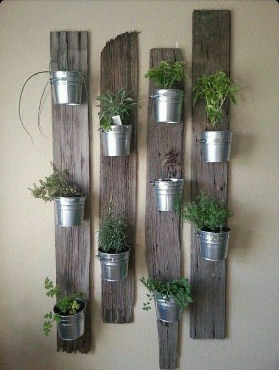 Take A Few Pallet Planks And Nail Them To The Wall Strongly Fix Hang Of Your Indoor Pots On That Way You Ll Be Able Create Lot