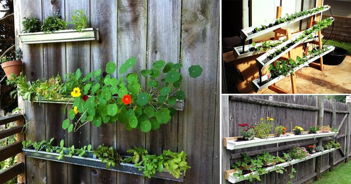 13 Vertical DIY Rain Gutter Garden Ideas For Small Spaces | Balcony ...