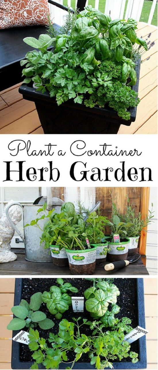 32 Cute DIY Plant Marker Ideas For Container Gardeners ...