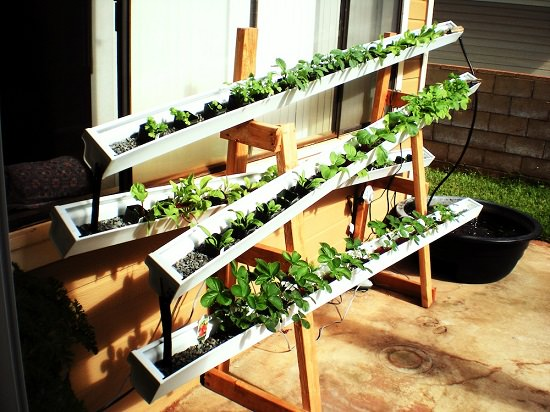 13 Vertical DIY Rain Gutter Garden Ideas For Small Spaces ...