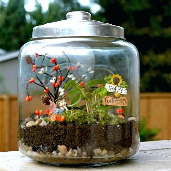 Image Result For Fairy Garden Container Ideas