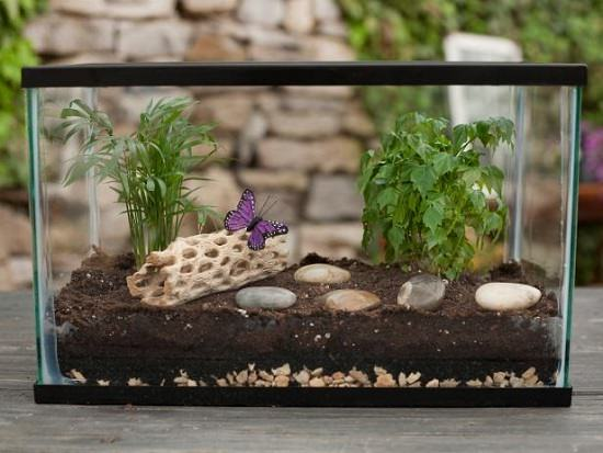 Make A Miniature Indoor Garden For Your Home From An Old Fish Tank. For The  Instructions, Visit The DIY Network.