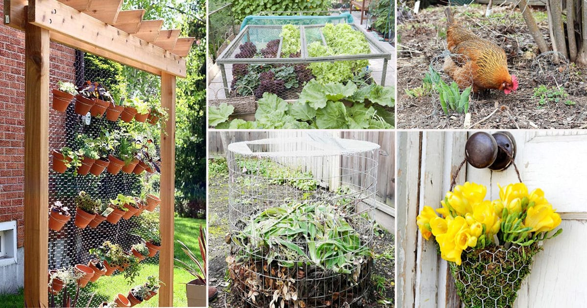 25 Absolutely Amazing DIY Chicken Wire Projects For The Garden