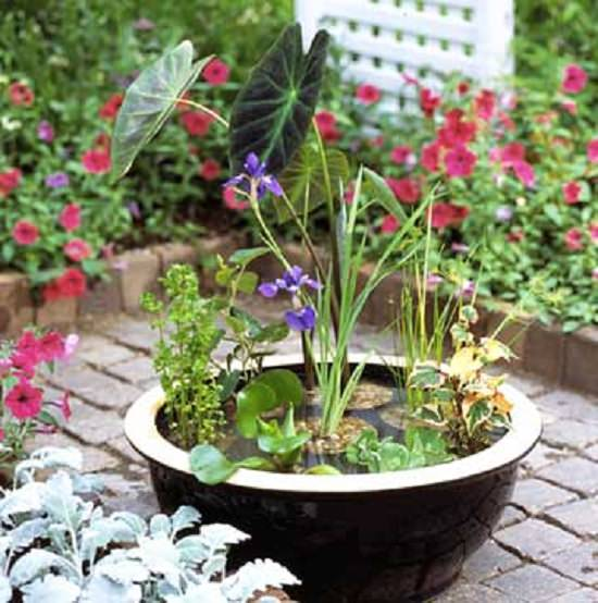 14 Ideas To Make A Small Garden Look Bigger: 13 Peaceful DIY Container Water Garden Ideas For Container