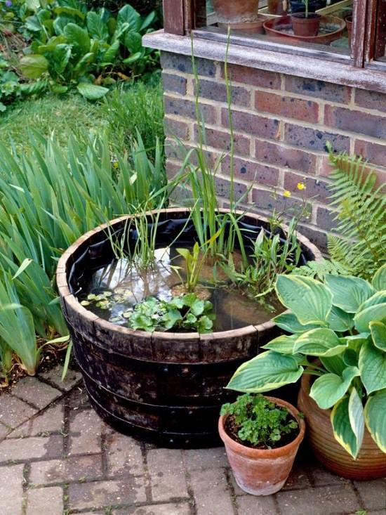 Lovely Container Water Garden Ideas Part - 3: Select Any Container That Can Hold Water To Build Your Container Pond. This  Informative Article Also Explains The Variety Of Aquatic Plants You Can  Grow In ...