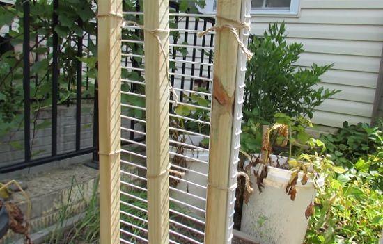 11 Functional Diy Cucumber Trellis Ideas Balcony Garden Web
