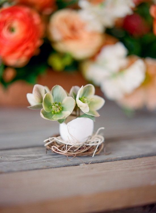 DIY Eggshell Ideas for you