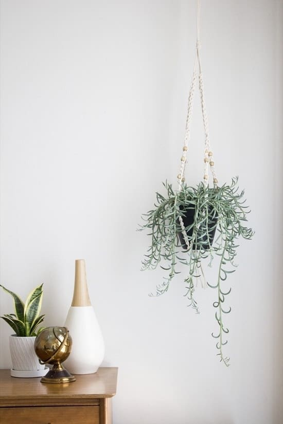 18 Free Diy Crochet Plant Hanger Patterns Balcony