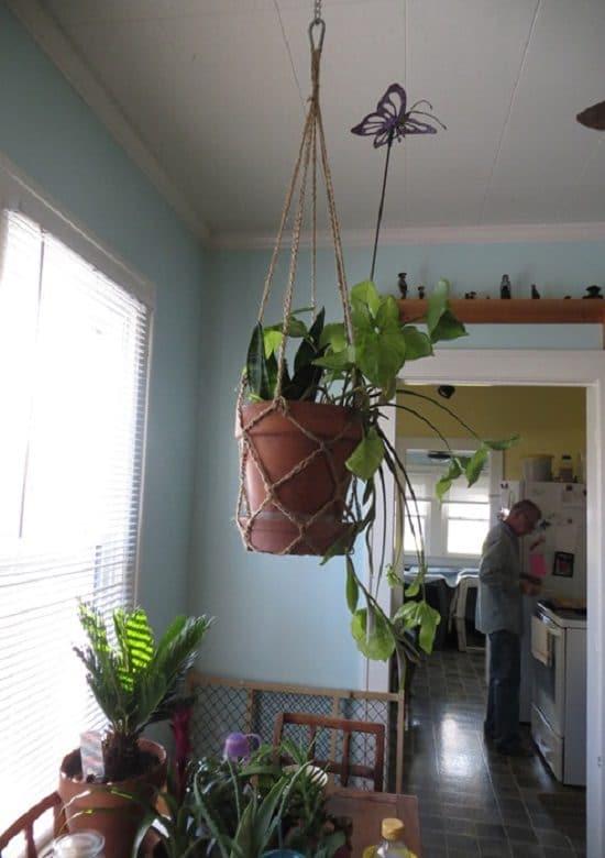 Balcony Plant Holder