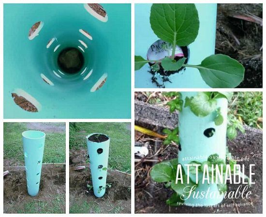 Grow Crispy Lettuce Or Mixed Greens In A Single PVC Pipe Vertical Grow  Tower Like This And Save A Lot Of Space! Get The In Depth Details At  Attainable ...