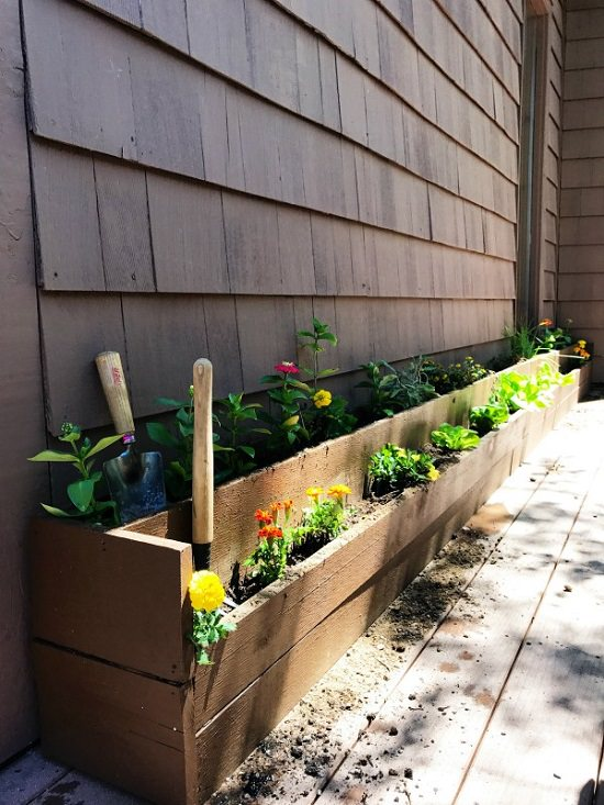 Raised Garden Bed For Growing Herbs And Vegetables