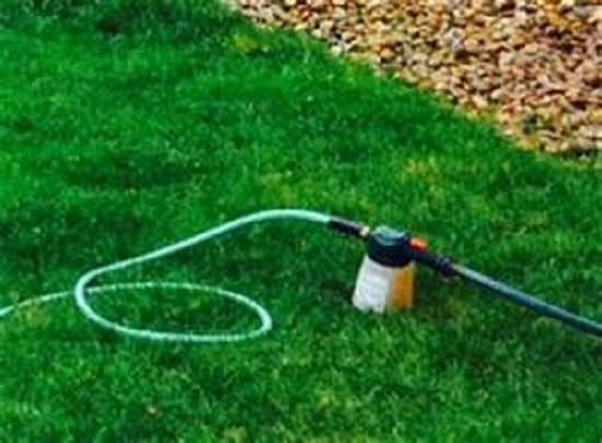 best Homemade Liquid Fertilizer