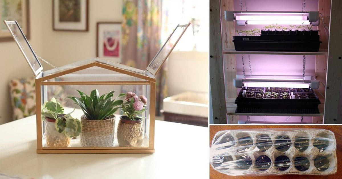 15 Diy Mini Indoor Greenhouse Ideas For Winter Early Spring Balcony Garden Web
