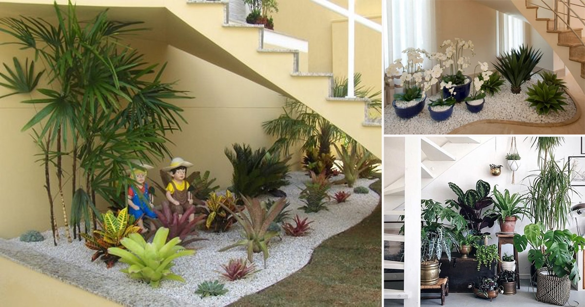 . 15 Unique Ideas For Indoor Garden Under Stairs   Balcony Garden Web