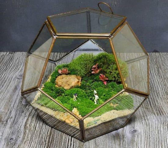 Indoor Moss Garden Ideas 5