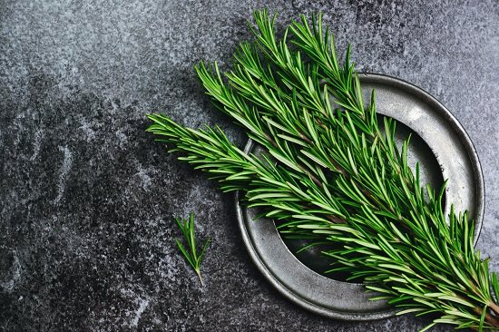 Rosemary Benefits backed by medical science