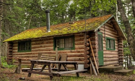 Build a Simple Log Cabin