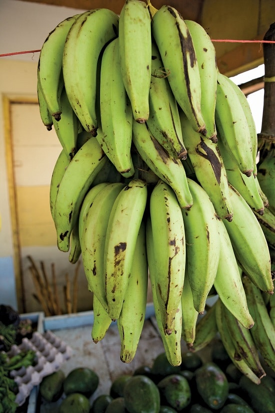 Types of Bananas 7