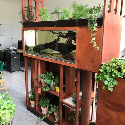 Furniture Garden Ideas 4