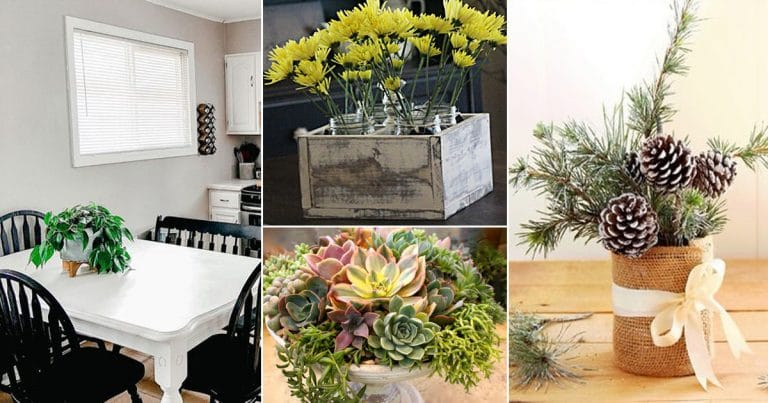 22 DIY Tabletop Centerpiece Ideas for Gardeners