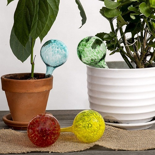 Things that'll Solve All Your Houseplant Problems 8